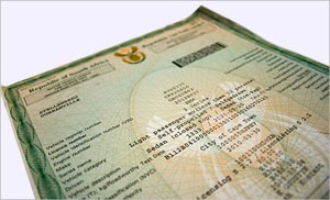 City warns that vehicle licence disc renewal notices are still not being sent